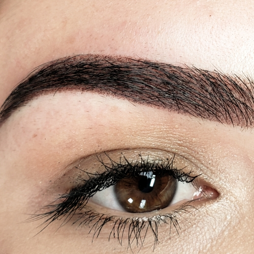 Eyebrows – Daria Chuprys Permanent Makeup Studio and Academy